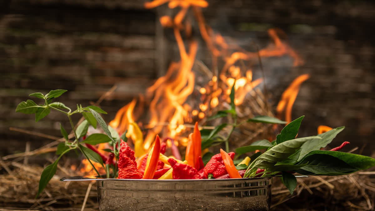 Fire and Chillis